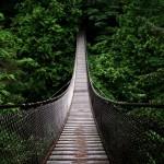 Questo spettacolare ponte si trova in bilico oltre le cime degli alberi - Vancouver, Canada