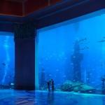 Hotel Atlantis in Dubai, United Arab Emirates 4
