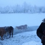 Oymyakon-Reindeer-Farmer
