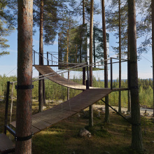 Tree Hotel, le case sull'albero più incredibili del mondo