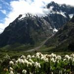 Montagne Norvegesi