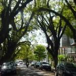 Rua Gonçalo de Carvalho 11