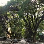 Rua Gonçalo de Carvalho 8