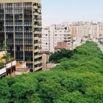 Rua-Gonçalo-de-Carvalho6