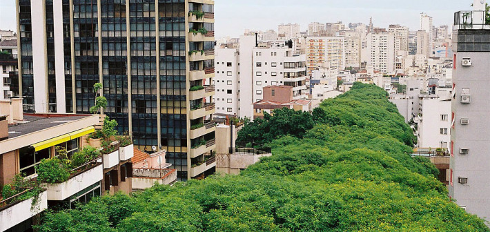 La strada più bella del mondo, la Rua Gonçalo de Carvalho