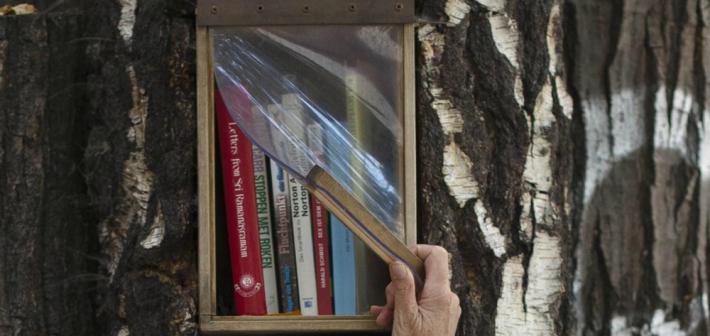 Book forest: a Berlino si colgono libri dagli alberi