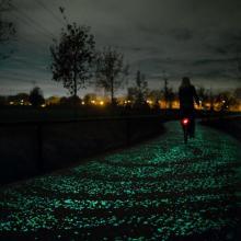 In Olanda, la pista ciclabile ispirata alla 'Notte stellata' di Van Gogh