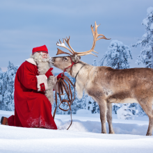 Il Natale secondo Coolture Hunter